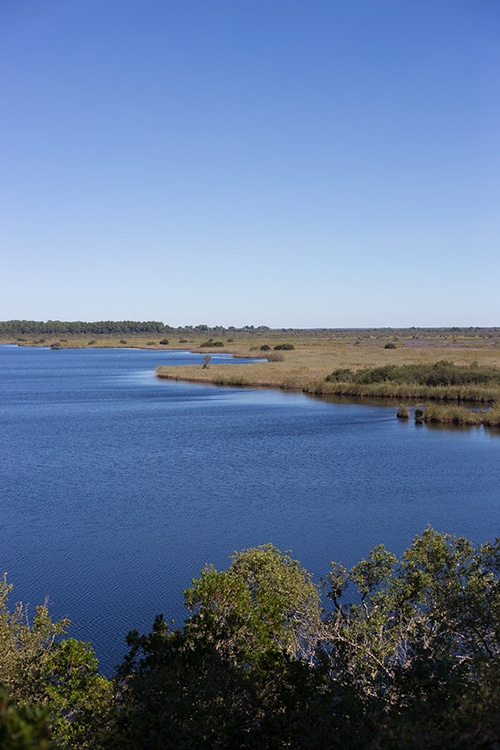 Water in natuurpark Etang de Cousseau aan de Atlantische kust van Frankrijk.
