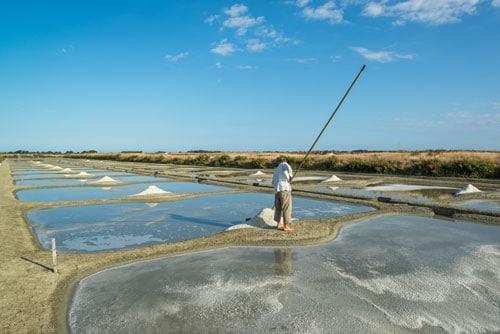 Een man staat tussen de zoutpannen in Île de Noirmoutier.