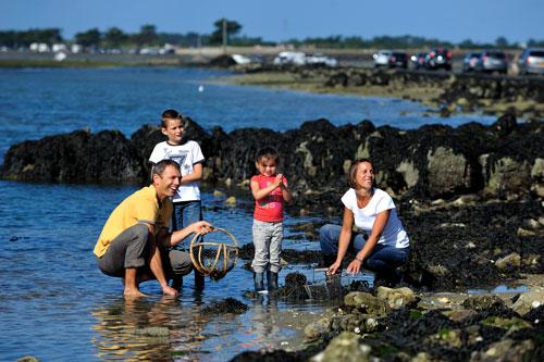 Mensen verzamelen zeeschatten in Île de Noirmoutier aan de Atlantische kust van Frankrijk.