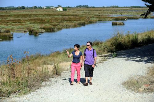 Twee mensen wandelen in de polder van Île de Noirmoutier.