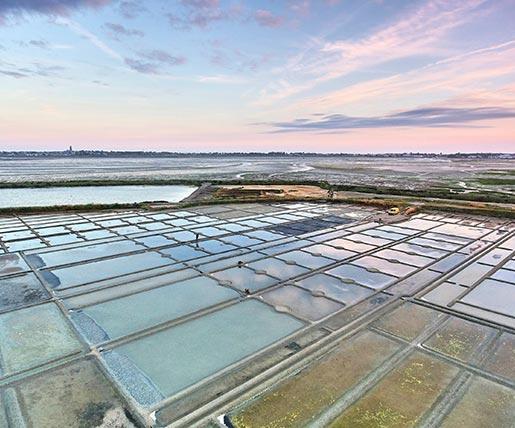 Die Salzgärten am Atlantik in der Nähe des Loiretals
